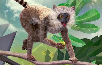 Ученые рассказали, что доисторические приматы оказались сладкоежками