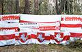 From Navapolatsk To Pruzhany: Partisans Held Rallies All Over Belarus