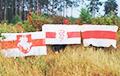 «Наш флаг есть в каждом доме!»