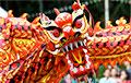 Решил «жениться» на китайском драконе