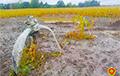 Пад Берасцем на кукурузным полі знайшлі самалёт