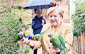 Меркель стала героиней мемов