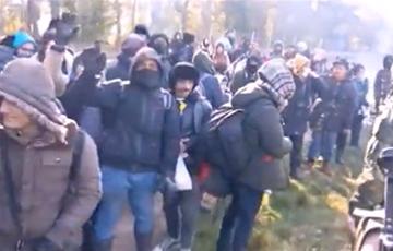 Польские пограничники показали, как группа мигрантов идет на штурм границы со стороны Беларуси