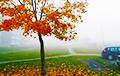 На Беларусь опустился сильный туман