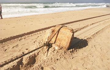 В Бразилии обнаружили груз c затонувшего нацистского судна