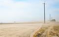 Буря в пустыне: как Полесье зарастает барханами