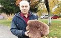 Жители Лиды нашли в лесу рекордно большой гриб «медвежье ухо»