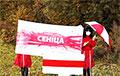 Партизаны Боровлян и Сенницы направили смелое послание «режимчику»