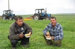 Колхозы начнут выдавать зарплату продуктами