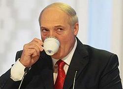 Белорусская овчарка: Газ! Газ!