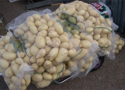 Russia accuses Belarus of potatoes smuggling