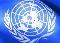 Fair World activists appeal to UN