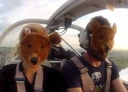 Девушка из шведского самолета: Мы летали над Беларусью полтора часа
