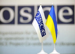 OSCE lost contact with its representatives in Donbas