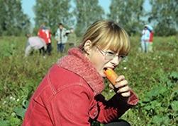 В Горбацевичах 400 человек не получают зарплату с октября
