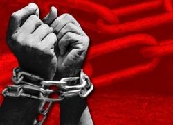 Правозащитники: Декрет о тунеядцах создает базу для принудительного труда