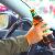 Пьяный лихач в Минске повредил четыре авто и протаранил подъезд