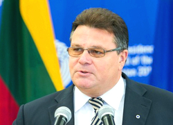 Lithuanian Foreign Minister: Situation in Ukraine becomes deadlocked