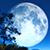 Вице-премьер России назвал стратегической задачей захват Луны