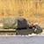 Российская армия у границ Украины учится форсировать реки