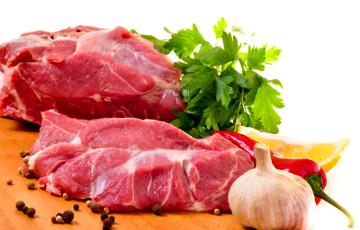 В Японии ученые вырастили искусственное мясо