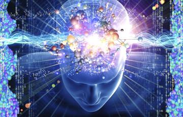 Ученые выяснили, как именно мозг запоминает последовательность событий