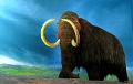 Ученые обнаружили на бивне сибирского мамонта рисунки, которым 13 000 лет