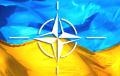 НАТО утвердил новый пакет поддержки Украины и Грузии