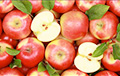 Belarus Increased Import Of Polish Apples Several Times