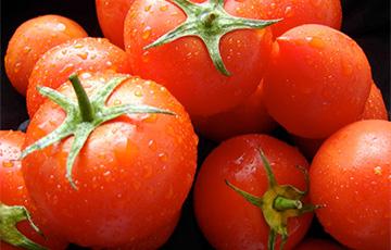 Через Беларусь в РФ возят турецкие помидоры
