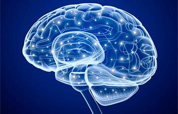 Ученые рассказали, какая зона мозга отвечает за эмоции