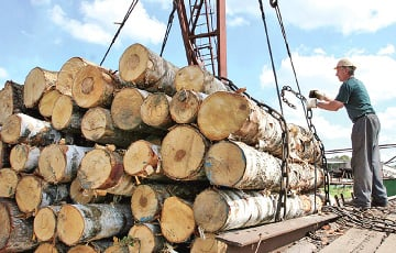 State Control Committee: Millions Of US Dollars Invested In Wood-Processing Industry With No Return