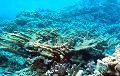 Ученые обнаружили следы древней цивилизации на дне Мертвого моря