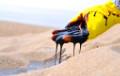 Кошт нафты Brent упаў ніжэй за $42 упершыню з 2 ліпеня