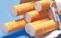 Белорусские контрабандисты спрятали в картошке сигареты на $100 тысяч