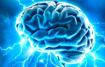 Диетолог назвала необычные продукты для улучшения работы мозга