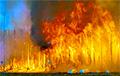 Пуцін накіраваў расейскіх вайскоўцаў тушыць пажары ў Сібіры