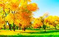 Якім будзе надвор'е ў канцы кастрычніка і пачатку лістапада