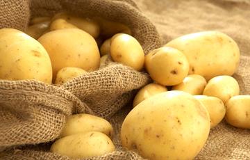 Жара и картошка