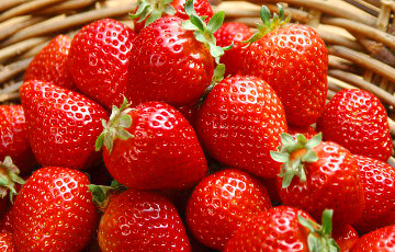 Belarusian Villagers Throw Away Strawberries To Protest