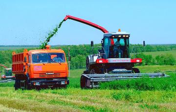 Эксперт: Беларусь уже потеряла радиоэлектронику и легпром, на очереди – сельское хозяйство