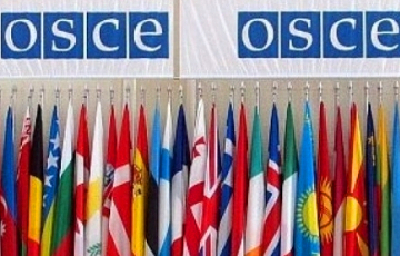 OSCE PA Condemned Tsikhanouski And Other Belarusian Political Prisoners' Arrest