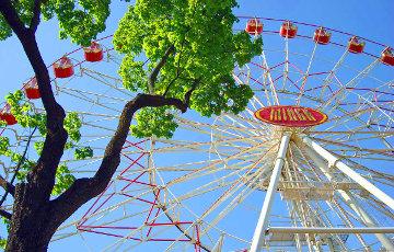 Рой пчел остановил колесо обозрения в минском парке Горького