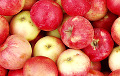 17 Tons Of Belarusian Apples Squeezed By Tractor In Bryansk Region