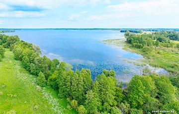 Какие дешевые земельные участки вокруг Минска можно купить без аукциона