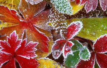 В выходные в Беларуси ожидаются морозы до -13°C
