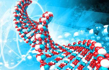 Белорусские и российские ученые создадут совместный банк ДНК-данных