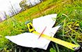 Иностранцам в Беларуси разрешат владеть земельными участками