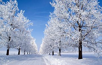 Фотофакт: Как минчане встречают первый день зимы и обильный снег