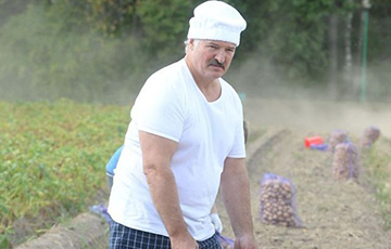 Lukashenka: We Need To Plough, Seed Day And Night